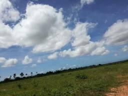 Fazenda com 61 há em carnaubal, perto da lagoa de boqueirão, poço tubular, irrigação