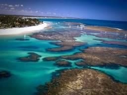 Vendo Apartamento Flat Tipo Resort Próximo A Praia De Muro Alto Porto De Galinhas! Agende
