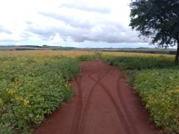 Fazenda 101 alqueires de terra roxa cultivável as margens do Rio Goioerê