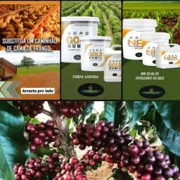 Adubo Turfa para café, 50% mais barato que o convencional