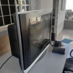 TV 29 polegadas, com conversor digital.