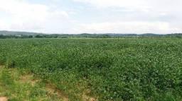 Fazenda de 101 hectares com 86 hectares plantando em Guarantã do Norte -MT, 4 km da BR163