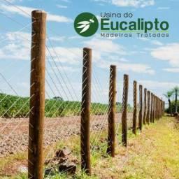 Palanque para Cerca - Eucalipto Tratado Citriodora