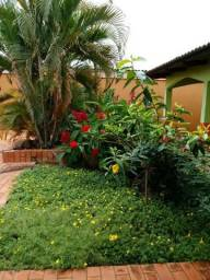 Alugo linda Casa no Vila Ivonete