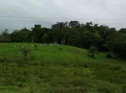 Casas, Sitio, fazenda e terrenos