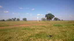 Vendo Fazenda com 1690 hectares com 1350 hectares formados em pastos