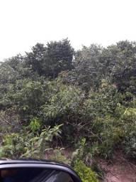 Permuto 1500 hectares, Aceita 50% Brasil, Beira Rio, Região Reserva do Cabaçal- MT .