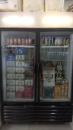 Camara fria 2 portas