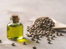 Canabis oil