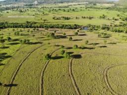 Fazenda 38 Alqueirao Pecuaria Dupla aptidão Bem localizada Terra de Primeira