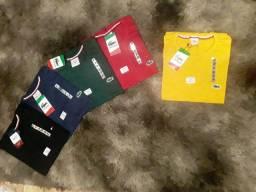 Kit c/5 camisas por 100