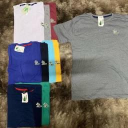 Camisetas básicas 5 por 100,00