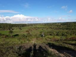 Arrendo Fazenda na ilha de Itaparica