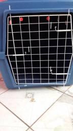 Caixa casa de transporte animal