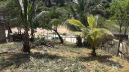 Vendo  este tereno em nova betania