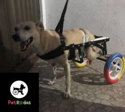 Cadeira de rodas e andador para cães e gatos.