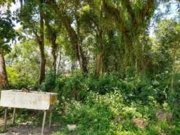 Lote de chácara medindo 1000 m², em Itanhaém/SP 7227-pc