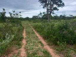 Título do anúncio: Fazenda Oportunidade- 306 Alqueires | Pega Rio verdinho | 65km Jatai-GO