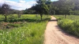 Fazenda 73 alqueires próx. Gov. Valadares