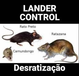 Problema com Ratos