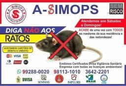 Ratos Ratos e Catitas serviços de empresa
