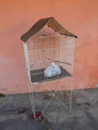 Viveiro periquito