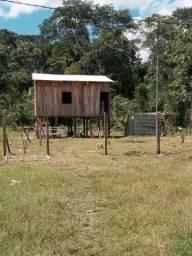 Vendo uma casa no Bairro vila Maria distrito industrial