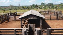 Vende-se bela Fazenda em Apuí Amazonas