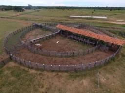 Fazenda à venda no Pantanal MT, Região Alto Pantanal, 15.000 ha - R$ 45.000.000,00 - Zona