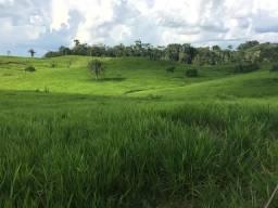 Fazenda na Br 364 480 hec