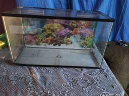 Um aquário