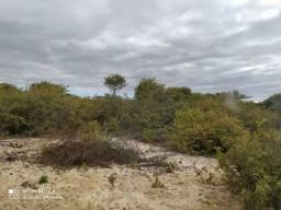 Vendo área 107 hectare