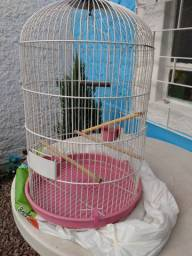 Gaiola redonda para pássaros