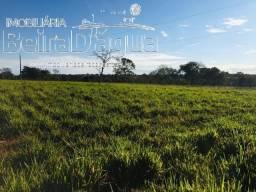 Fazenda Pecuaria Plana Rica em Agua Facil Acesso 24 Alqueirao