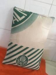 Travesseiro do Time Palmeiras