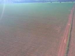 Excelente fazenda 90 hc livre,35 mil por hec