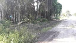 Terreno à venda, 360 m² por R$ 68.000,00 - Sai Mirim - Itapoá/SC TE0542