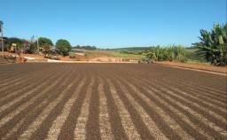 Café 100% arabica direto do produtor Sul de Minas Gerais para todo Brasil