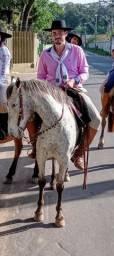 Égua de pelagem diferenciada pra quem procura pra desfile