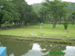 Sitio em Área Nobre de Tingua , Nova Iguaçu -RJ