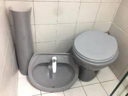 Pias e sanitário usados
