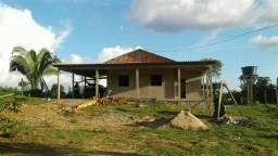 Chácara na Transacreana Km 25, 8 hectares, com casa de alvenaria e a 450 metros do asfalto