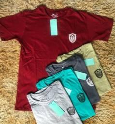 Camisas Osklen kit com 2 camisas