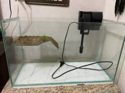 Terrário tartaruga com filtro