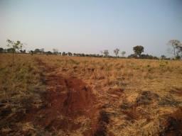 Fazenda em Sidrolândia