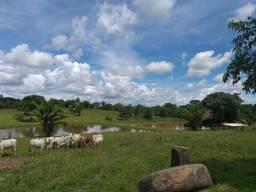 Linda propriedade rural em Rio Branco