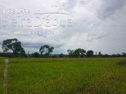 Fazenda Pecuaria Plana Rica em Agua 45 Alqueires em Campina Verde