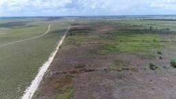 Terra em Roraima - 320 hectares