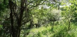 Excelente oportunidade de investimento! Área de terra com 11,6 hectares