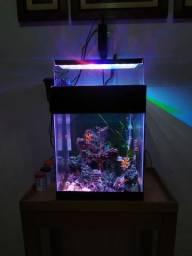 Leds para aquários